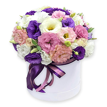 Lisianthus in box