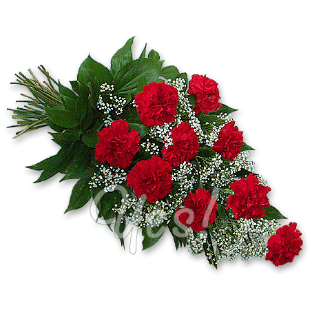 Bouquet of red carnations to Erevan