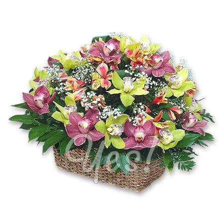 Корзина с орхидеями и альстромериями