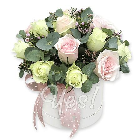 Розы в шляпной коробке в Белграде