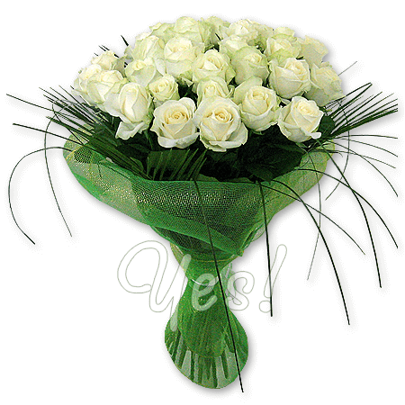 Букет из белых роз (60 см.) с зеленью