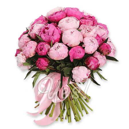 Букет из красных розовых пионов