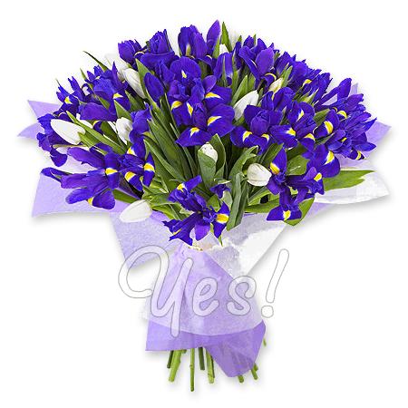 Букет из ирисов и тюльпанов в Варшаве