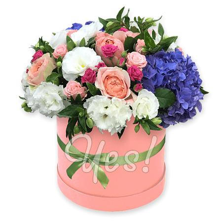 Цветы в шляпной коробке в Кишиневе