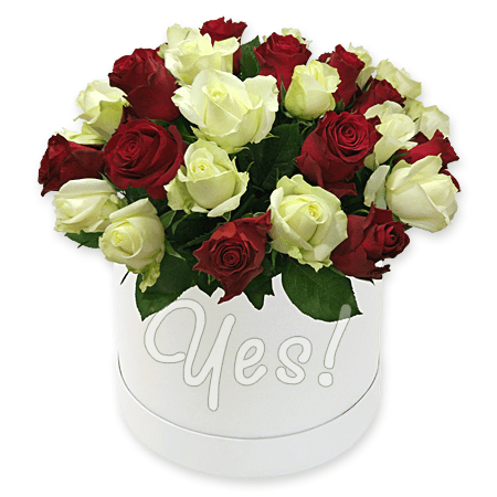 Red and white roses in box to Kiev