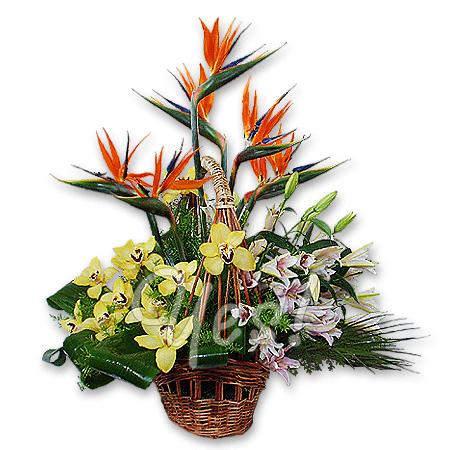Корзинка с экзотическими цветами