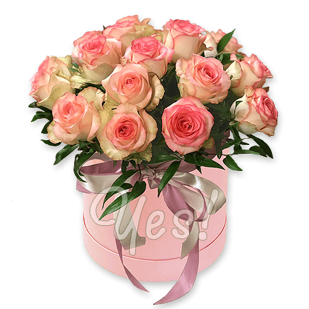 Pink roses in  box
